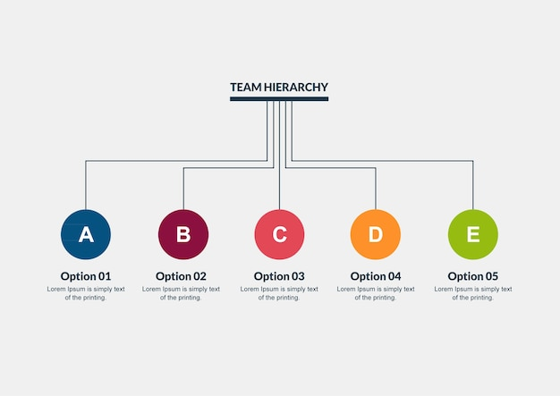 Team hierarchy timeline infographic