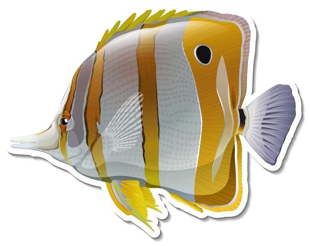 티어드롭 나비고기 바다 동물 스티커