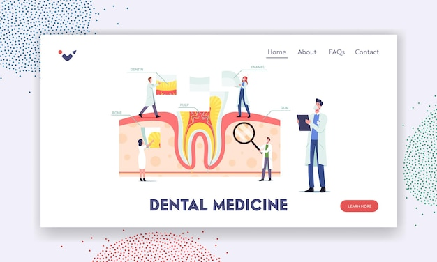 Teeth anatomy and structure landing page template. tiny dentists characters at huge tooth infographics with gum, pulp, bone, dentine or enamel, medic aid poster. cartoon people vector illustration