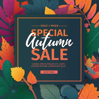 Template design discount banner for autumn season.