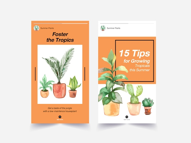 Template design with summer plant and house plants for social media, internet and advertise watercolor illustration