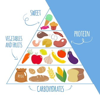 Template of food pyramid