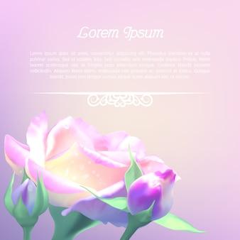 Шаблон для текста с розой. приглашение на свадьбу, день рождения. открытка на праздник лета, или день матери
