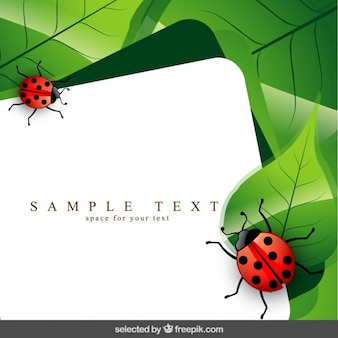 Template with ladybug and leaves