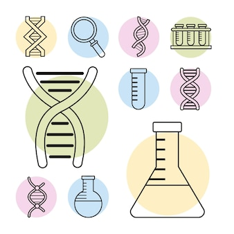 10個のdna遺伝子セットアイコン