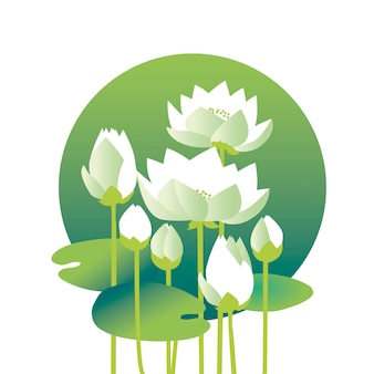 Tender elegant white water floral  illustration for invitation, greeting, poster. water lily, lotus flowers in nature stylized image.