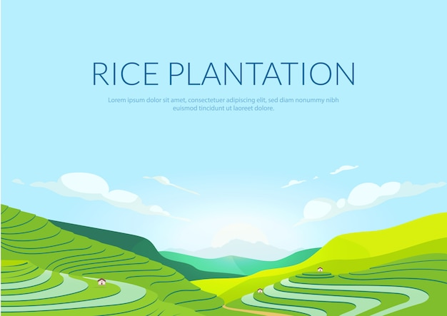 Terraced plantation poster flat template