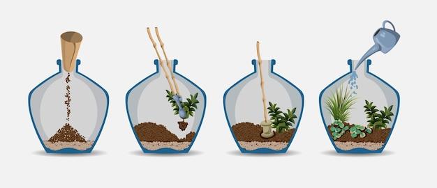 Террариум природа зеленое растение в стеклянном саду, растение на украшении природная ботаника