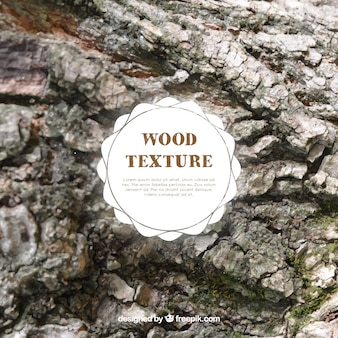 Texture made of wood
