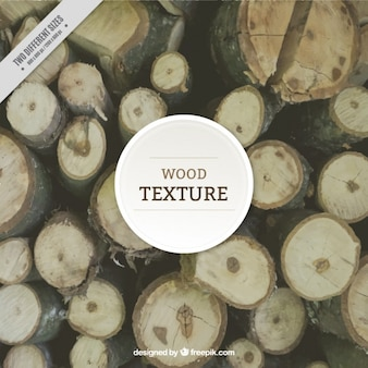 Текстура древесного ствола