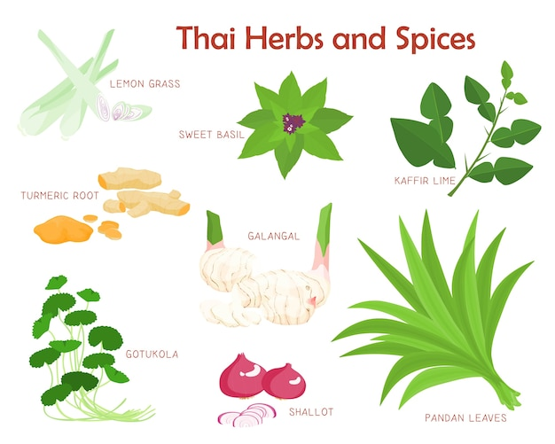 Thai herbs and spices seasoning