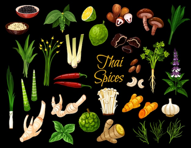 Thai spices, herbs and cooking condiments