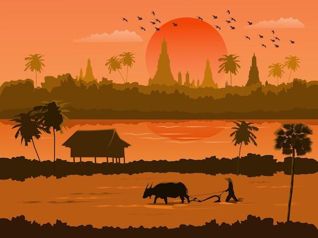 Вид на закат в таиланде с фермерами, работающими на полях. на фоне реки и буддийского храма