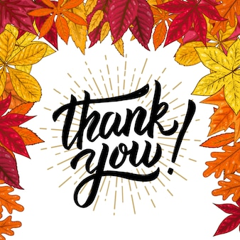 Thank you. hand drawn lettering phrase on background with autumn leaves.  illustration.