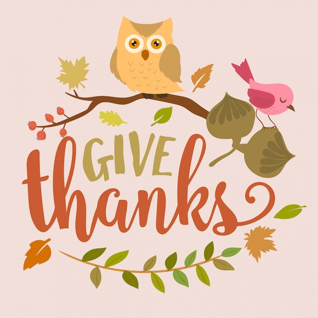 Thanksgiving background with owl and acorns