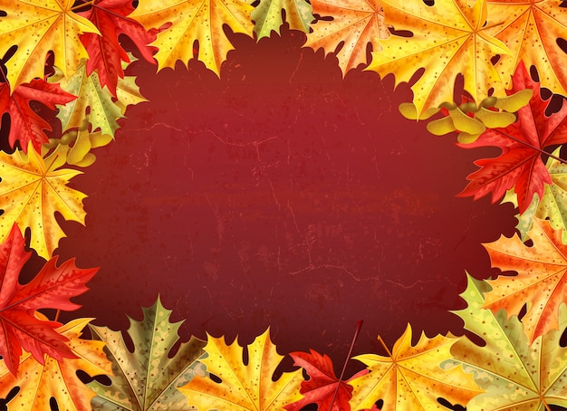 Thanksgiving day background with leaves of a maple tree style vector illustration