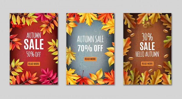 Thanksgiving day banner or tag set with autumn sale descriptions and orange leaves around vector illustration