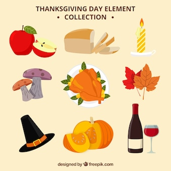 Thanksgiving day elements collection