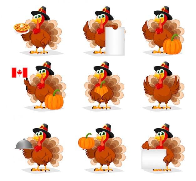 Thanksgiving day. funny turkey