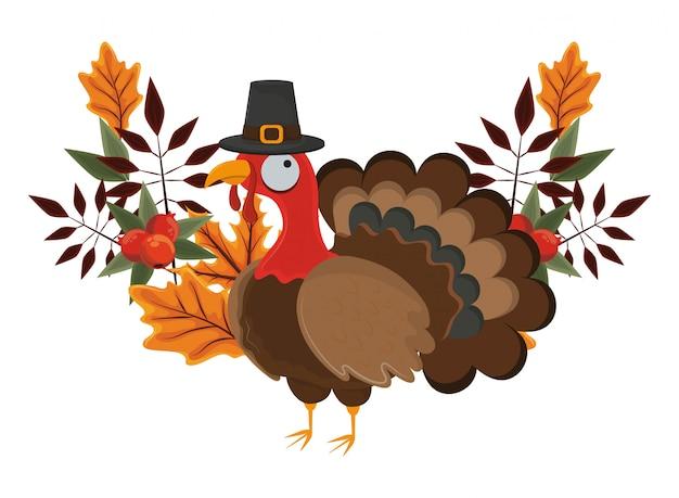 Thanksgiving day turkey