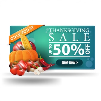 Thanksgiving sale, up to 50% off, horizontal 3d web banner with autumn harvest.