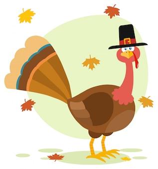 Thanksgiving turkey bird with pilgrim hat cartoon character