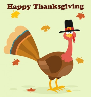 Thanksgiving turkey bird with pilgrim hat cartoon character.