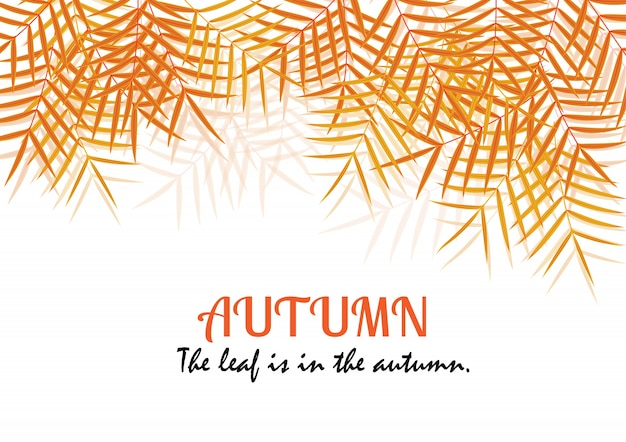 秋のカード。茶色の草の葉は秋です