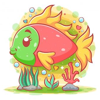 녹색 머리를 가진 아름다운 붉은 광대 물고기