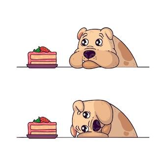 Бульдог смотрит на кусок пирога тренировка на выносливость с собакой домашнее животное ожирение