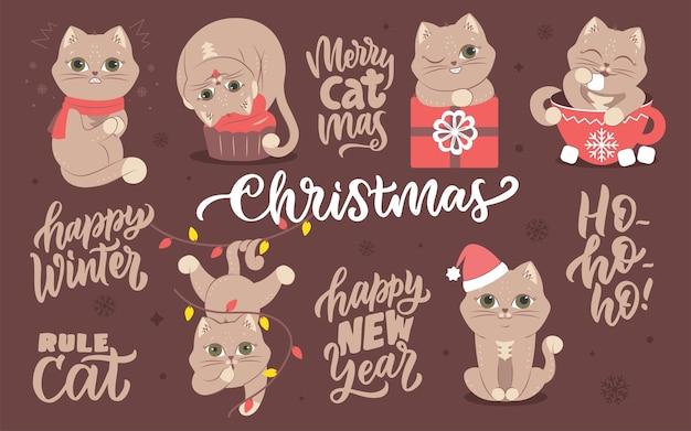 Коллекция изображений зимних животных с надписями набор кошек для новогодних дизайнов.