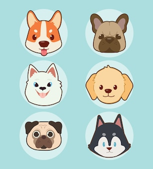 かわいい顔の犬セットのコレクション。 Premiumベクター
