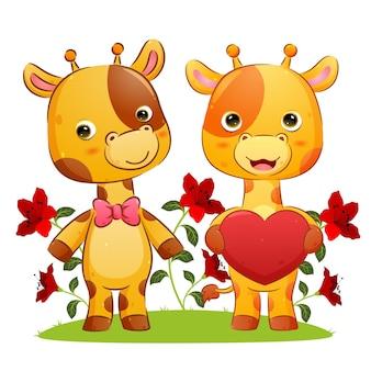 Пара жирафов делится любовью и свиданиями в парке, иллюстрация