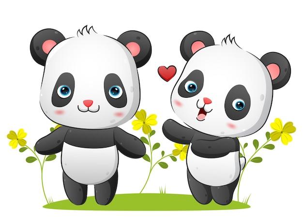 Пара панд пытается поймать любовь и вместе стоит в парке.