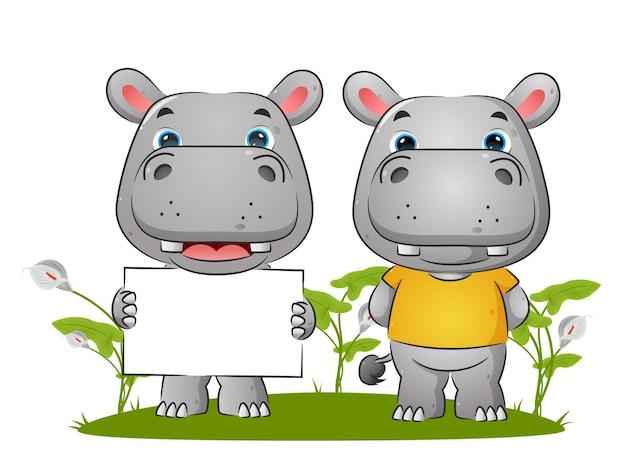 Пара счастливых бегемотов стоит и держит пустую доску на траве поля иллюстрации
