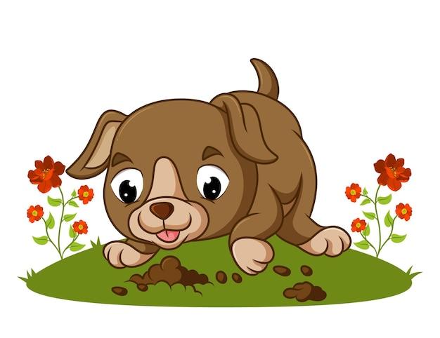 귀여운 강아지가 삽화의 구멍을 파고 있다
