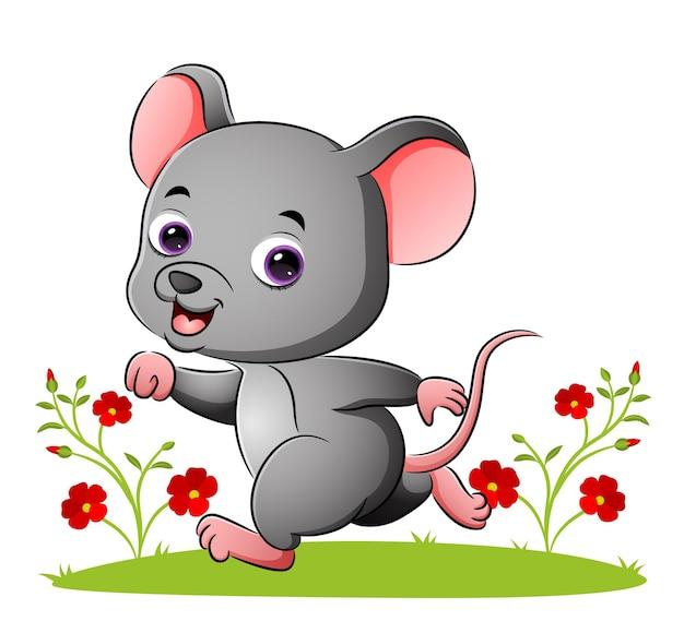 イラストの庭でかわいい若いネズミが走っています