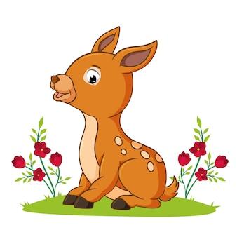 사슴이 삽화의 정원에 앉아 있다