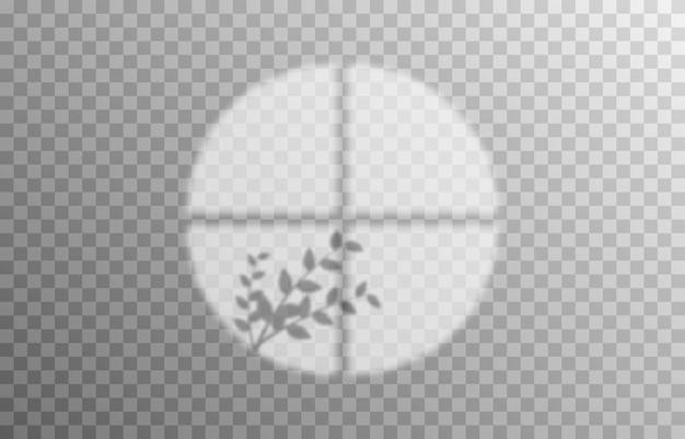 중첩 그림자 효과 창과 식물의 그림자