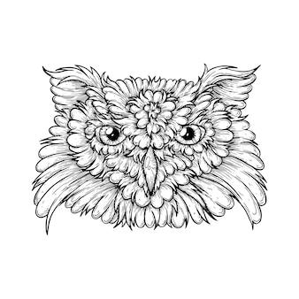 종이에 펜과 잉크로 만든 올빼미 벡터 예술적 삽화의 얼굴