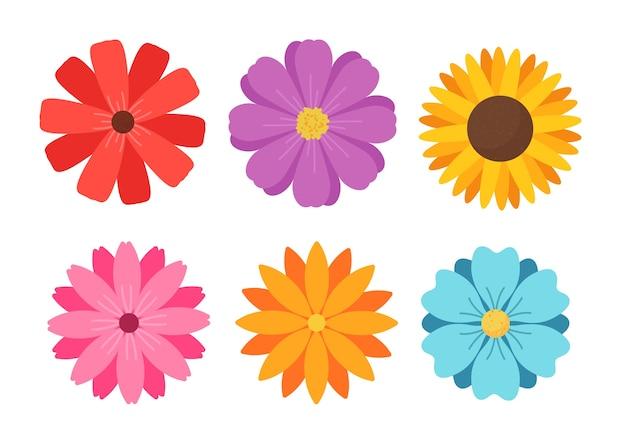 正面は色とりどりの花です。白い背景で隔離。
