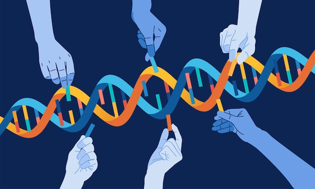 インフォグラフィックに使用されるdnaらせん遺伝子概念ベクトル図を完成させる手