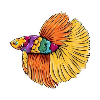 아름다운 주황색-노란색 꼬리와 화려한 몸매를 가진 betta 물고기 zentangle의 그림