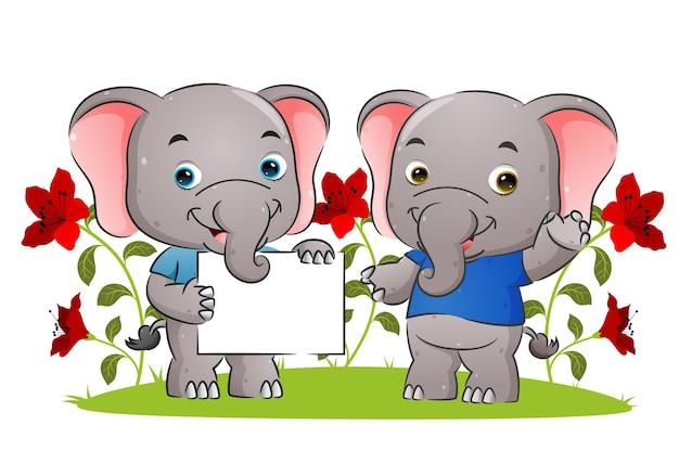 小さなカップルの象が空白のポスターを持ち、イラストを見せている