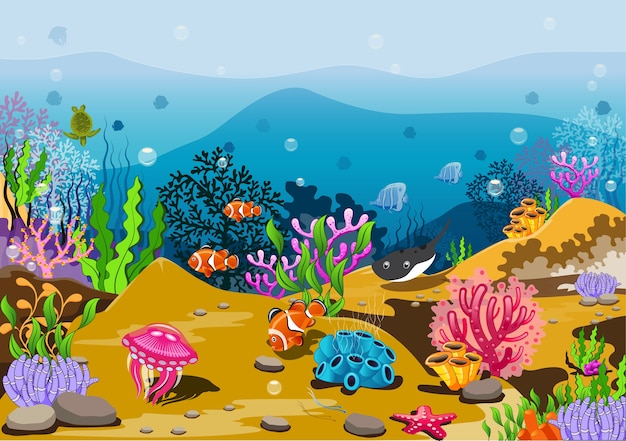 Мировой океан и подводный мир