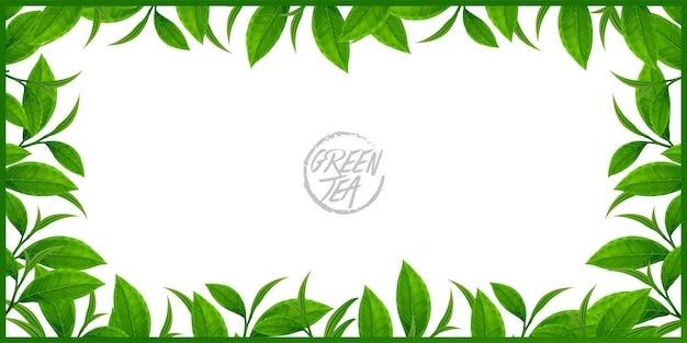 健康ベクトルイラストのプレミアム緑茶。