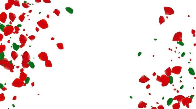 白い背景の上のバラの紙吹雪。ペッドの花が咲きます。ロマンチックな創造的な構成。愛の概念。