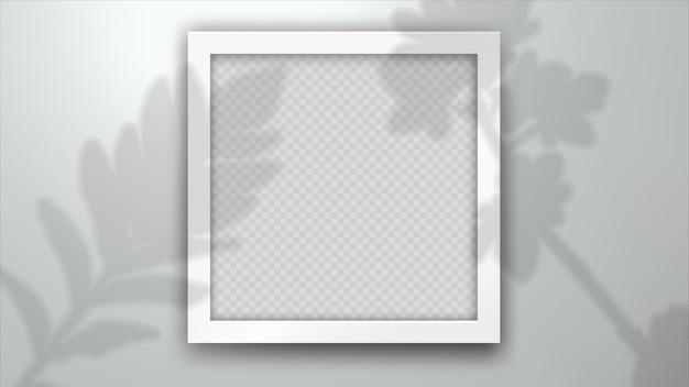 사진 프레임에 관상용 식물 잎의 그림자