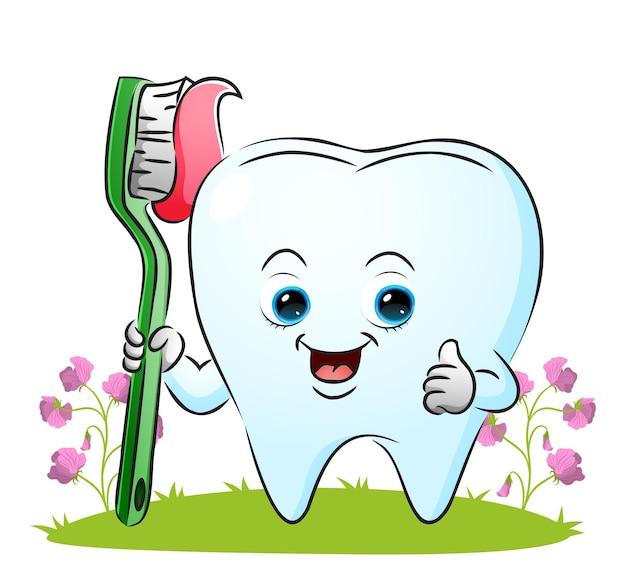 Зуб держит зубную щетку с зубной пастой, показанной на иллюстрации.