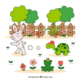 거북이와 토끼 우화